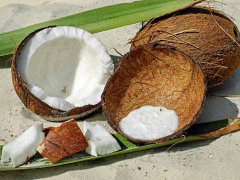 Kokosnoot invriezen